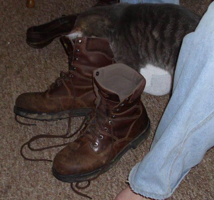 PussInBoots01