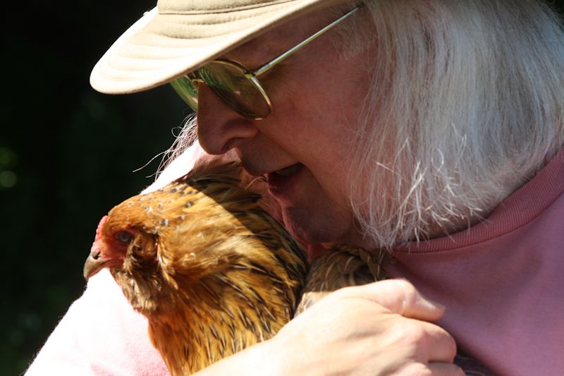 Daisy is an American chicken that loves to be hugged by John.