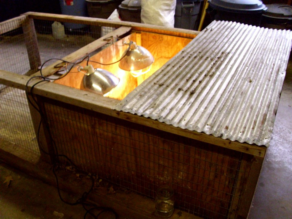 Brooder Box with Heat Lamps and Cover