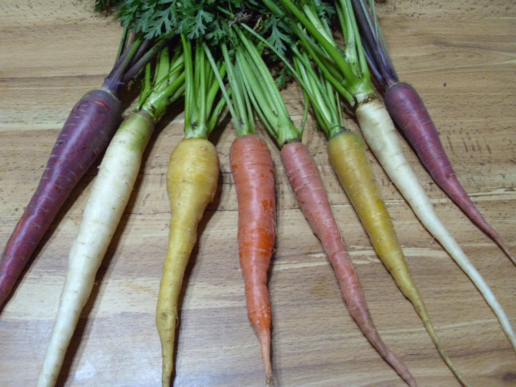 Colorful carrots make for exceptional meals.